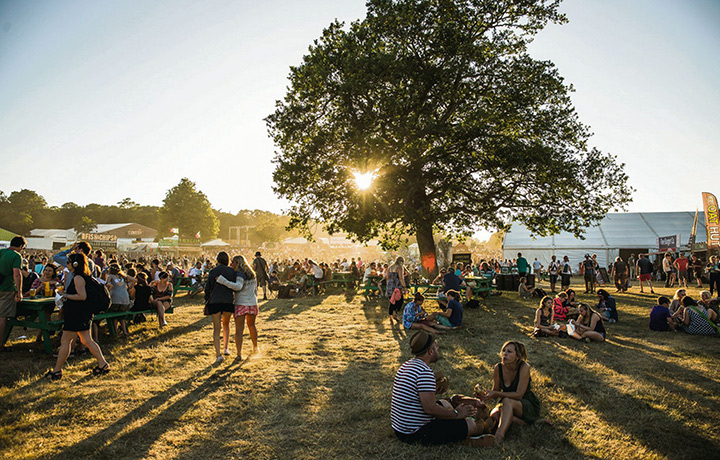 Летний фестиваль квестов
